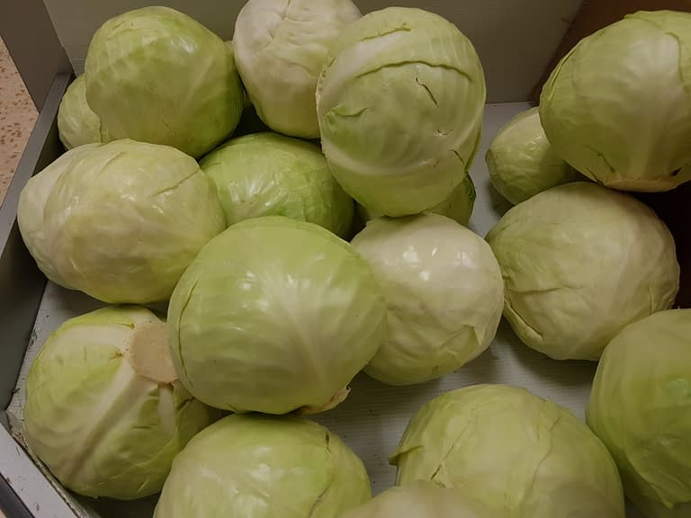 Cabbage brings more benefits